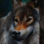 European Wolf by Lynn Hughes