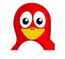 Red Penguin Photographic Print