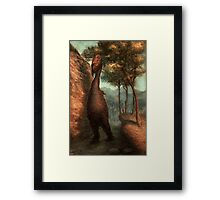 The Obliek  Framed Print