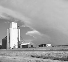 Grain Elevator, Somewhere in the Texas Panhandle, Take Two by CandyApplCrafts