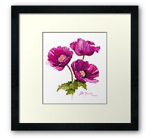 Purple Poppies Framed Print