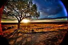 New Mexico Sunset by Bill Wetmore