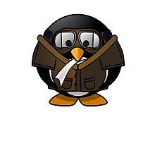 Pilot Penguin Photographic Print