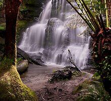 Henderson Falls by Darryl Fowler