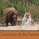 Jack Russell Rescue Xmas Card 1 by JRTrescue