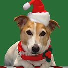 Jack Russell Rescue Xmas Card 3 by JRTrescue