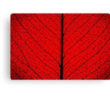 Leaf Structure Canvas Print