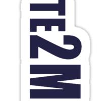 #Vote2Miguel Banner Blue Sticker