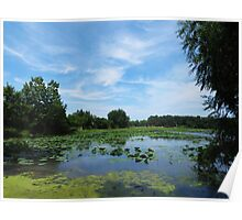 East Harbor State Park - Scenic Overlook Poster