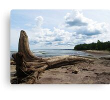 Lake Erie Shore Canvas Print