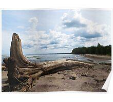 Lake Erie Shore Poster