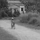 Rural vietnam by Julie Sleeman