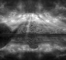 ©DA The Light IA In Monochromatic by OmarHernandez