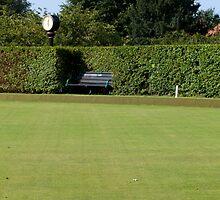 Bowling Green damage by Sue Robinson