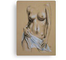 Sheer #5 Canvas Print