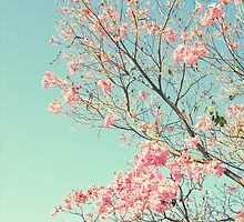Spring Kissing the Sky by RichCaspian