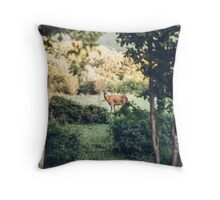 Lone Deer  Throw Pillow