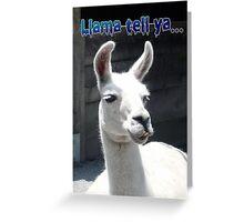 """""""LLama Tell Ya..."""" Funny Llama Greeting Card"""
