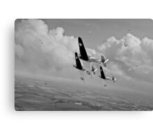 Rising to the challenge - black and white version Canvas Print