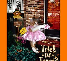 Halloween Trick-or-Treat Kitty Standing in Costume by MoMoCards