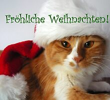 Fröhliche Weihnachten - Christmas Cat Wearing Santa Hat by MoMoCards