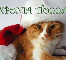 Greek Greeting - Christmas Cat Wearing Santa Hat by MoMoCards
