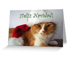 Feliz Navidad - Christmas Cat Wearing Santa Hat Greeting Card