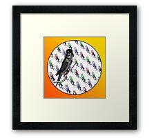 Star Birds Framed Print