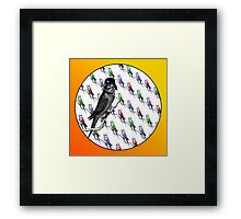Star Birds Framed Print