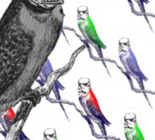 Star Birds Sticker