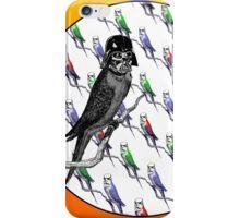 Star Birds iPhone Case/Skin