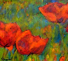 Bold Poppies, France by JackieSherwood
