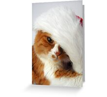 Christmas Cat Posing in Santa Hat Greeting Card