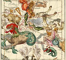Cetus, Aquarius, Andromeda, Pegasus, Phoenix, Aries, Triangulum And Other Constellations by VintageLevel