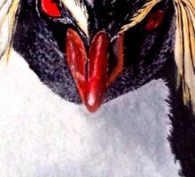 Rockhopper Penguin Sticker