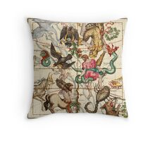 Hercules, Sagittarius, Delphinus, Scorpius, Caper, Lyra, Olor And Other Constellations Throw Pillow