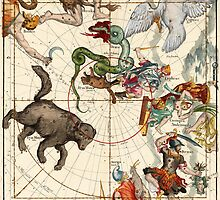 Ursa Major, Ursa Minor, Perseus, Hercules, Cassiopea, Andromeda And Other Constellations by VintageLevel