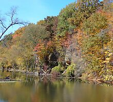Grand River in Autumn by Brian Schell