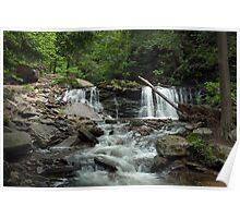 Cayuga Falls in Ricketts Glen Poster