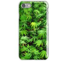 Marijuana (Weed) iPhone Case/Skin