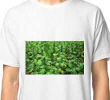 Marijuana (Weed) Classic T-Shirt