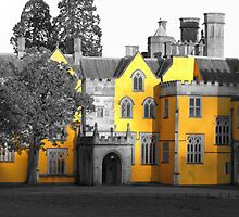 Ashton Court is Yellow by Rob Frith