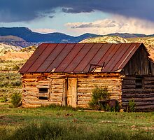 Weathering The Storm by James Marvin Phelps