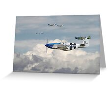 P51 Mustang - Blue Noses - 352nd FG Greeting Card
