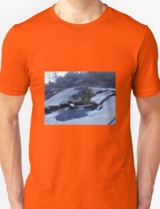 Angel Crossing T-Shirt