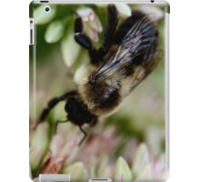 Bumbling Along iPad Case/Skin