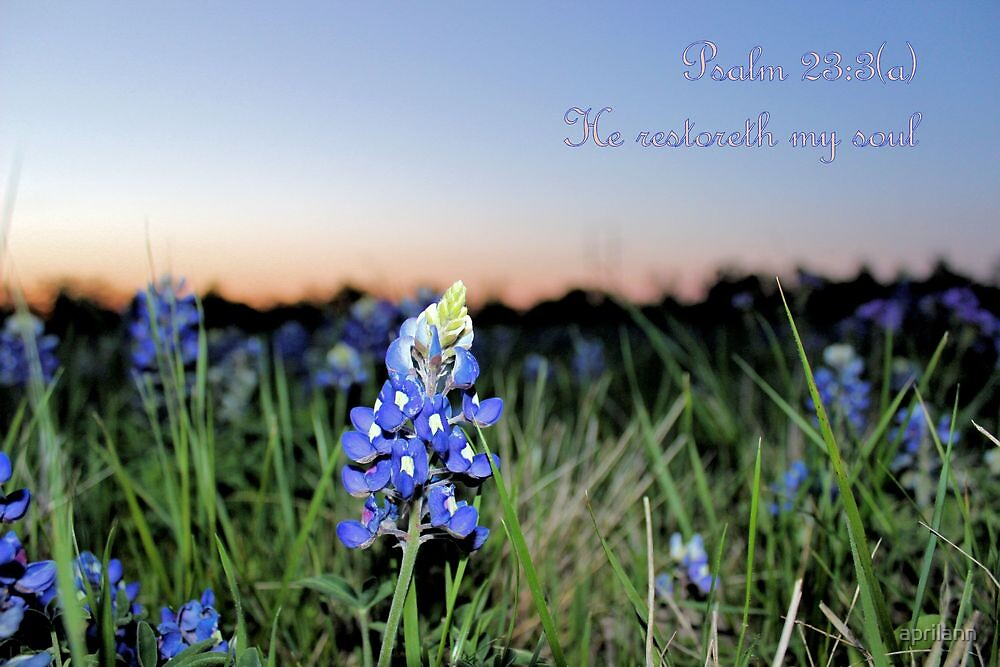 He Restoreth My Soul - Psalm 23:3(a) by aprilann
