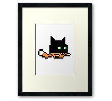 Baticat Framed Print