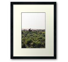 Moonah Links Series #85 Framed Print