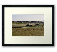 Moonah Links Series #88 Framed Print